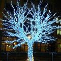 Drzewko z lampek - ul. Oławska #drzewo #choinka #wrocław #oławska #święta #lampki #diody #neony