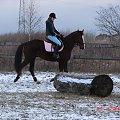 jazdaa. #konie #jazda