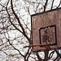 #kosz #koszykówka