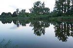 images31.fotosik.pl/226/c317cf5c19fafa7cm.jpg
