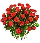 http://images31.fotosik.pl/262/b0f85b76e3ce5dd6m.jpg