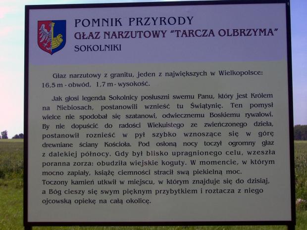 Pomnik przyrody Sokolniki 800m od kościoła #cmentarze