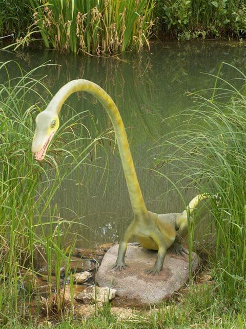 I tu dinozaur