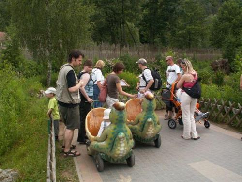 Grupa wózkowiczów