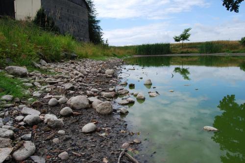 #jezioro #krajobraz #staw