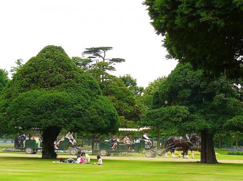 W kazdym z parkow krolewskich jest jakas atrakcja dla dzieci #Hampton #Londyn #Tudor