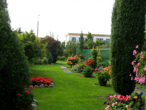 w ogródku