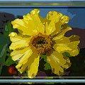 Trochę namalowanych obrazków... #malowane #PSP #MojePrace