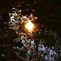 #słońce #przyroda #odbicie