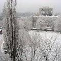 Zima w mieście #biało #BiałoWMieście #BiałyŚnieg #BiałyŚniegWMieście #drzewa #OśnieżonaWarszawa #OśnieżoneMiasto #PadaŚnieg #podwórko #śnieg #ŚniegWMieście #śnieżek #ŚnieżnaWarszawa #śnieżno #ŚnieżnoWMieście #Warszawa #zima