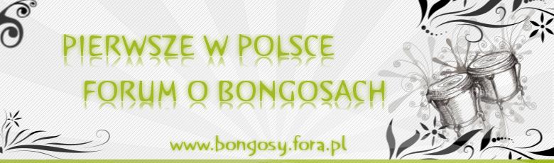 Forum PIERWSZE W POLSCE FORUM O BONGOSACH Strona Główna